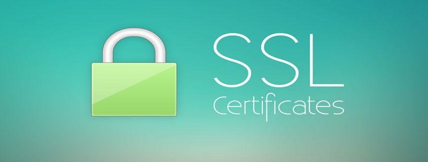 ssl sertifikası ne işe yarar