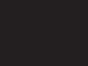 web tema dizayn