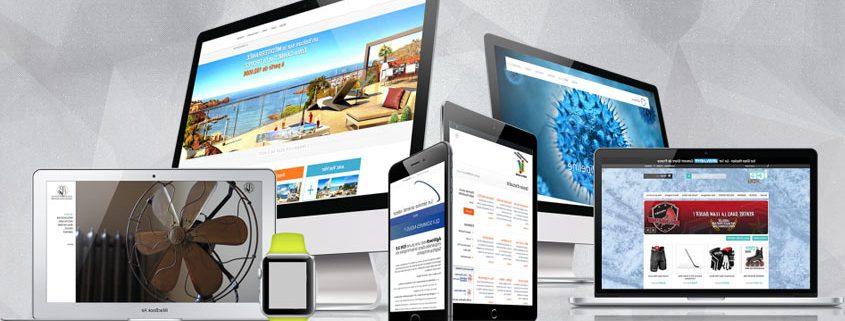 Web Sitesi Tasarımı Bursa